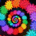 Camino de colores
